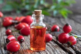 Image result for rosehip photo free