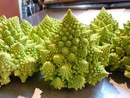 In season: Romanesco cauliflower | Food & Drink | madison.com
